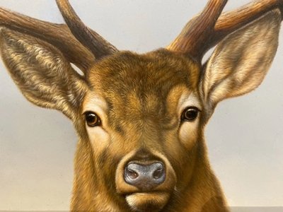 Hand-Painted Deer Oil Paintings