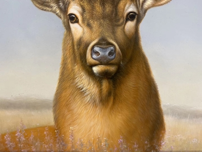 Deer Oil Painting Art