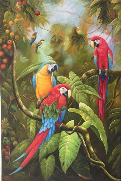 Parrots Oil Paintings