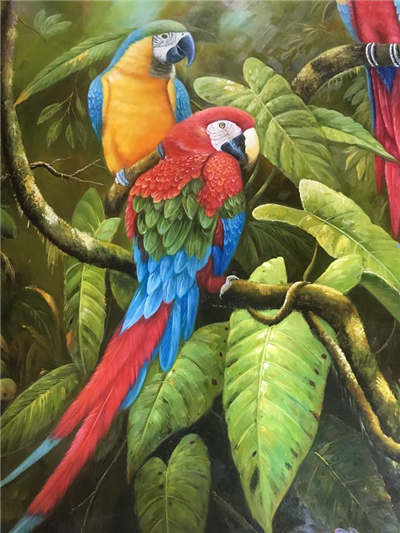 Fashion Parrots Oil Paintings